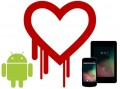 Google Reveals Prevalent Heartbleed Infection on Android 4.1.1 Devices
